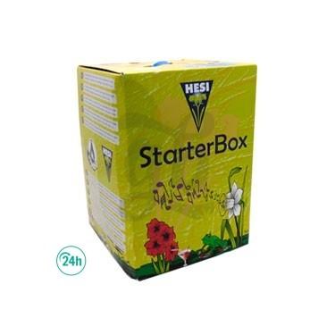 Starter Box Coco