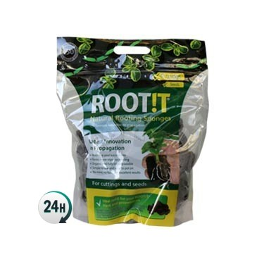 Root It tacos de propagación