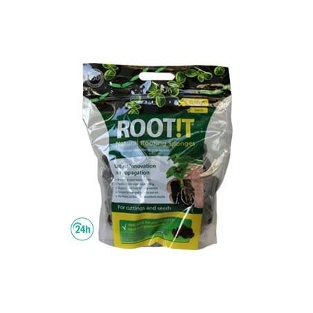 Root It propagation plugs