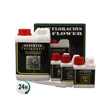 Genehtik Flowering Kit