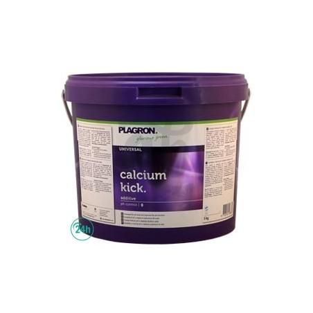 Calcium Kick