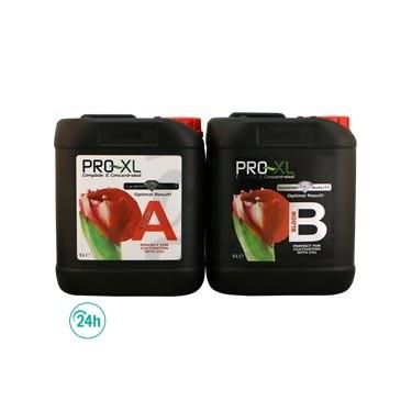 Bloom A+B Floración Pro XL