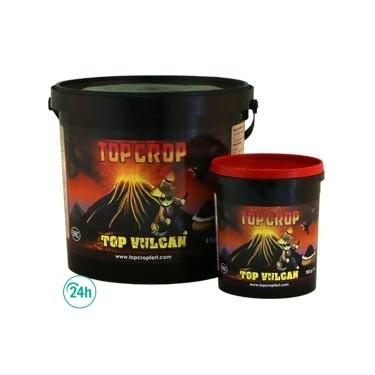 Albums de Vulcan