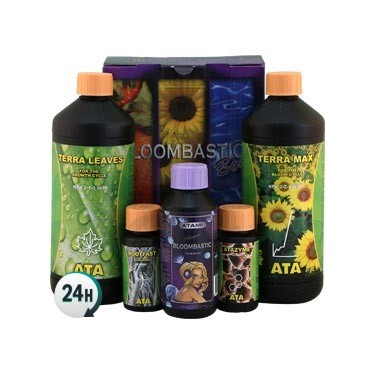Bloombastic Terra Box
