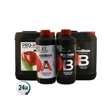 Bloom A+B Pro XL bottles