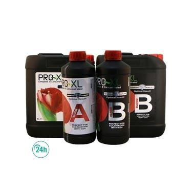 Bloom Bloom Pro XL + b