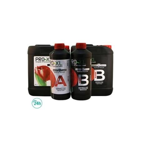 Bloom A+B Pro XL