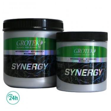 Synergy Organics