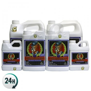Connoisseur A + B Ph Perfect by Advanced Nutrients