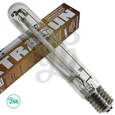 600w Dual Xtrasun Bulb