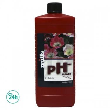 PH- Flower