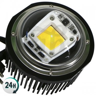 TX COB DOB LED Light