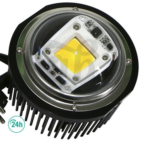 LED TX COB DOB Burbuja