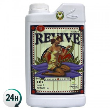 Bote de Revive