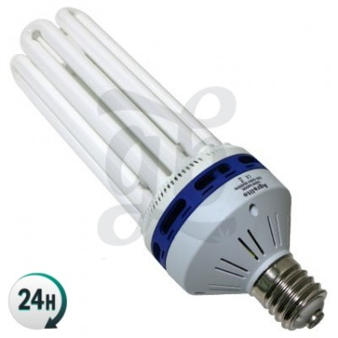 Agrolite Energy-saving CFL (growth)