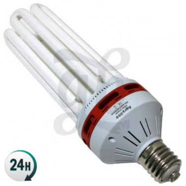 Agrolite Energy-saving CFL Bloom Bulb