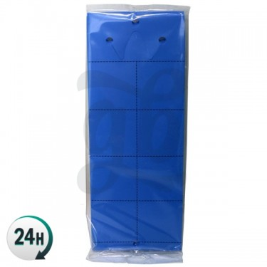 Blue Insect Traps 10pcs