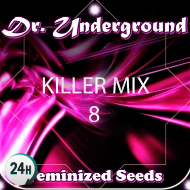 Killer Mix 8 cannabis plant