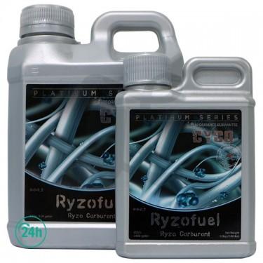 Ryzo Fuel cannabis plant