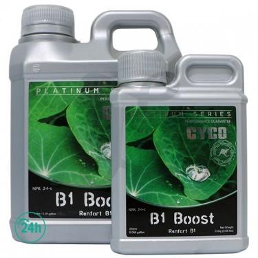 B1 Boost bottles