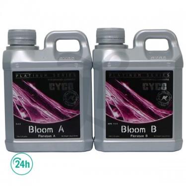 Bloom A+B