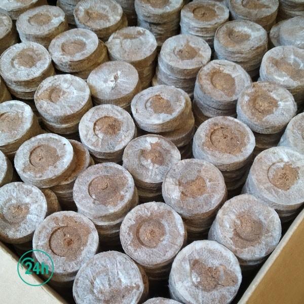 Caisse de Tourbe Pressée Jiffy 41 mm - 44 mm