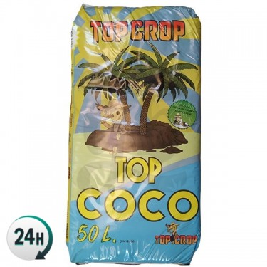 Top Crop Top Coco 50L