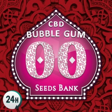 Bubble Gum CBD logo