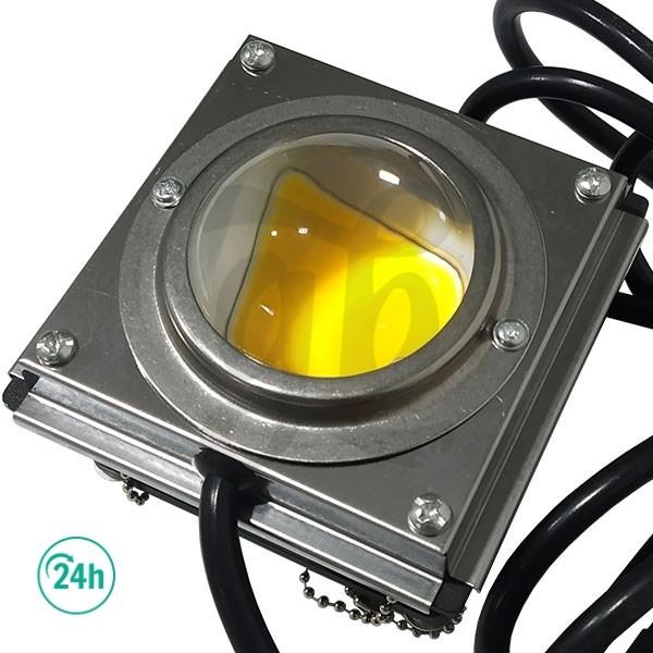 LED COB DY para los cultivos - Lente burbuja