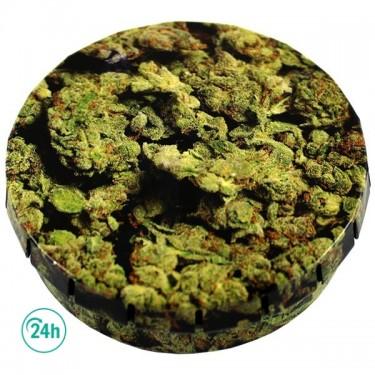Caja metálica Click - Planta de marihuana