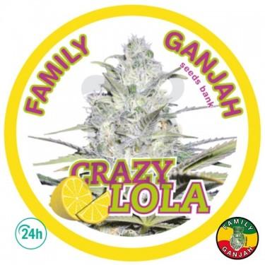 Crazy Lola planta de marihuana