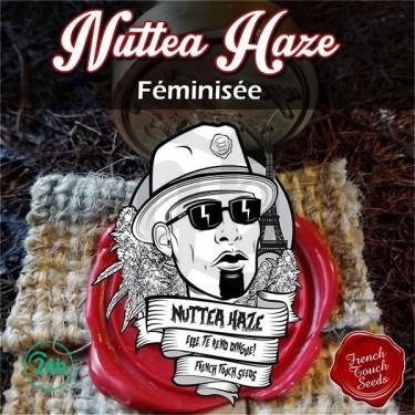 Nuttea Haze