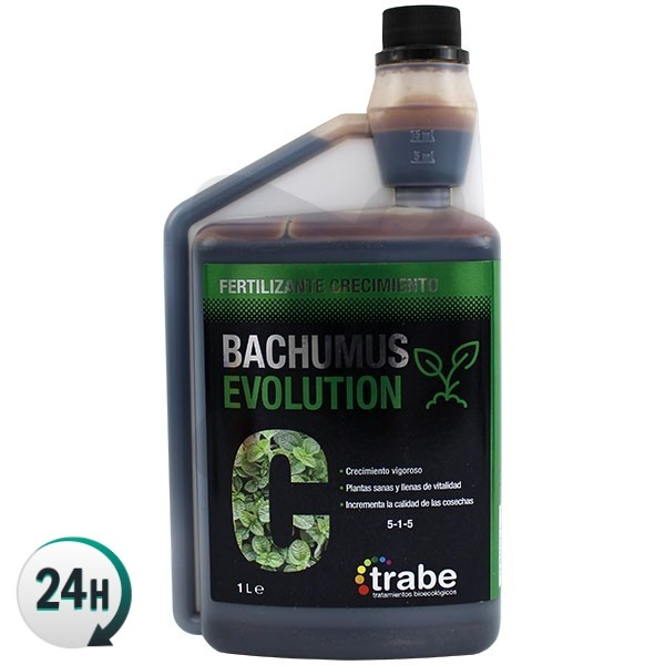 Bachumus Evolution C (Croissance)