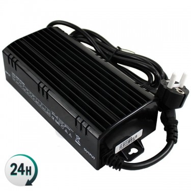 Vanguard 600w Electronic...