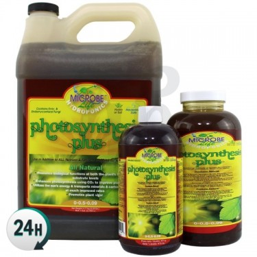 Photosynthesis Plus...