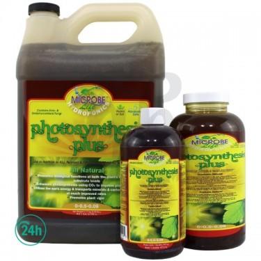 Potenciador de la fotosíntesis