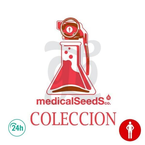 Colección 1 (Collection 1)