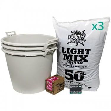Outdoor Feminized Kit 3 Seeds / No Fertilizer
