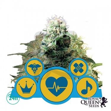Medical Mix CBD