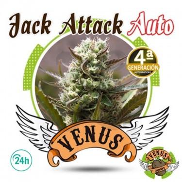 Jack Attack Auto