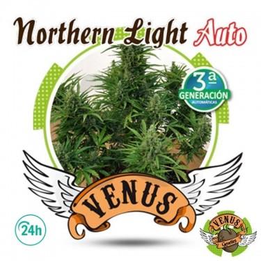 Northern Light Auto