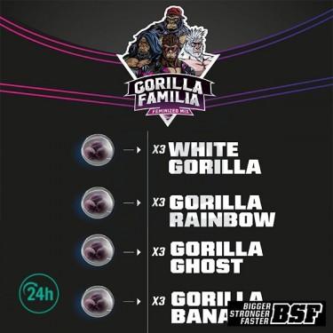 Gorilla Familia Mix...
