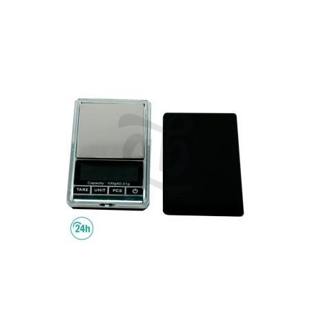 DE-100 Scale