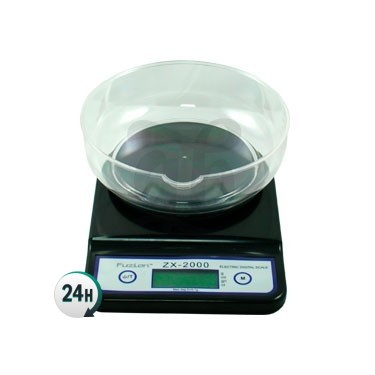 Zx 2000 Scales