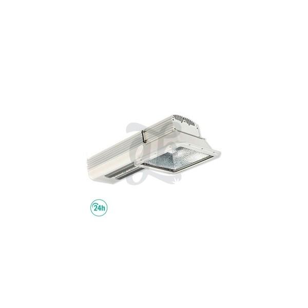 Gavita Plasma Lighting Kit