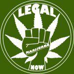 Is it Legal to Grow Cannabis in Spain?