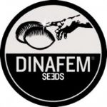 The Best Dinafem Seeds