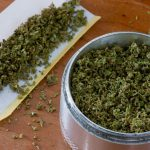 Cooking with Cannabis: Basics