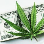 Recreational Cannabis in the USA