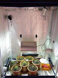 materials needed to grow cannabis indoors